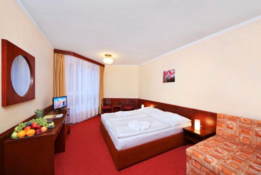 Hotel Svornost dubbelrum(28 feb-4 mar)