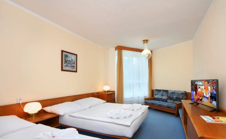 Hotel Svornost enkelrum(28 feb-4 mar)